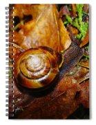 A Slow Snail Spiral Notebook