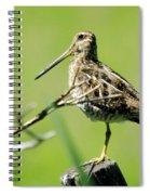 A Snipe  Spiral Notebook