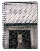 A Snowfall At The Stable Spiral Notebook