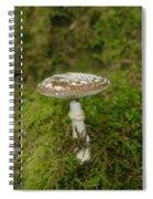A Sole Mushroom Spiral Notebook