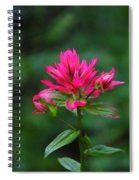 A Sole Wildflower Spiral Notebook