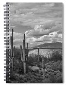 A Sonoran Winter Day In Black And White  Spiral Notebook