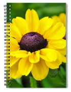 A Splash Of Sunshine Spiral Notebook