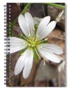 A Splash Of White Spiral Notebook