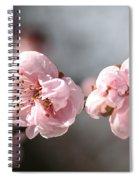 A Spring Dream Spiral Notebook