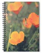A Springtime Breeze Spiral Notebook