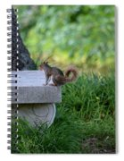 A Squirrel's Day Out Spiral Notebook