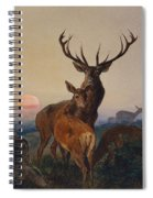 A Stag With Deer In A Wooded Landscape At Sunset Spiral Notebook