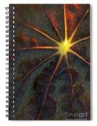 A Star Spiral Notebook