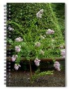 A Starburst Of Pink Spiral Notebook