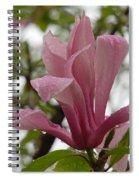 A Steady Rain Spiral Notebook