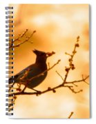A Stevens Jay Plucks A Berry  Spiral Notebook