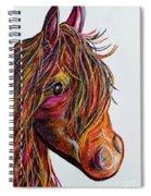 A Stick Horse Named Amber Spiral Notebook