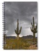 A Storm In The Sonoran Desert Spiral Notebook