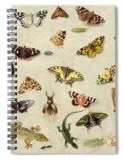 A Study Of Insects Spiral Notebook