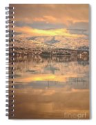 A Subtle Winter Spiral Notebook