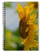 A Sunflower Profile Spiral Notebook