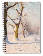 A Sunny Winter's Day Spiral Notebook