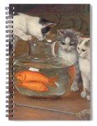 A Tempting Treat Spiral Notebook