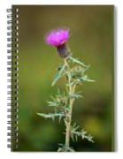A Thorny Beauty Spiral Notebook