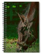 A Time To Eat Spiral Notebook