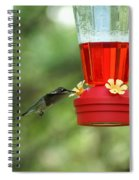 A Tiny Little Ruby-throated Hummingbirds Spiral Notebook