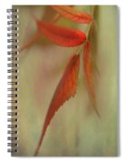 A Touch Of Autumn Spiral Notebook