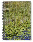 A Touch Of Beauty Spiral Notebook