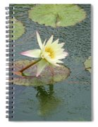 A Touch Of Pink Spiral Notebook