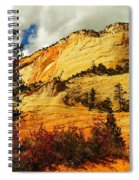 A Tree And Orange Hill Spiral Notebook