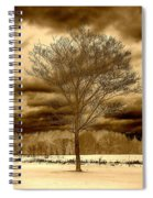 A Tree At Appleton Spiral Notebook