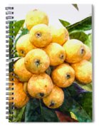 A Tree Full Of Ripe Loquats Spiral Notebook