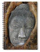 A Tree Hug Spiral Notebook