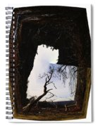 A Tree In A Square Abstract Spiral Notebook