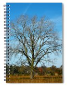 A Tree In Fall... Spiral Notebook