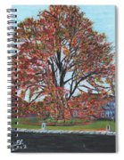 A Tree In Sherborn Spiral Notebook