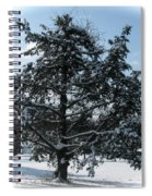 A Tree In Winter Spiral Notebook