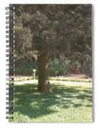 A Tree Spiral Notebook