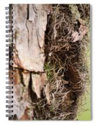 A Treetrunk Abstract Spiral Notebook