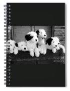 A Trunk Full Spiral Notebook