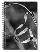 A Twist On Autumn In Black And White Spiral Notebook