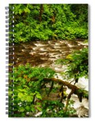 A View Of Eagle Creek Spiral Notebook