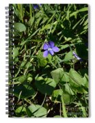 A Violet Spiral Notebook