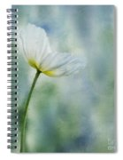 A Vision Of Delight Spiral Notebook