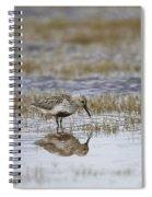 A Wading Dunlin Spiral Notebook