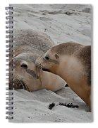 A Wake Up Kiss Spiral Notebook