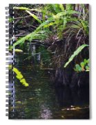 A Walk In The Glades Spiral Notebook