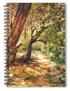 A Walk Through Spiral Notebook