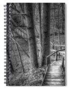 A Walk Through The Woods Spiral Notebook