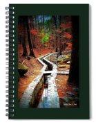 A Walk Through The Woods Spiral Notebook